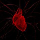 Illustration de coeur avec des impulsions Photos stock