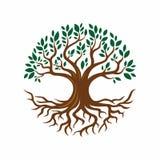 Illustration de conception d'arbre et de racine illustration de vecteur
