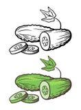 Illustration de concombre Photos libres de droits