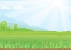 Illustration de champ vert avec des rayons de soleil et illustration de vecteur