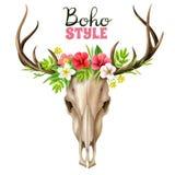 Illustration de crâne de Boho Image libre de droits
