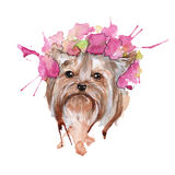 Illustration de crabot yorkie watercolor illustration de vecteur