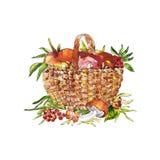 Illustration de croquis de panier avec des champignons Photos stock