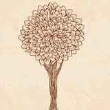 Illustration de cru d'un arbre Photo stock