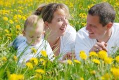 Illustration de famille dans le domaine de pissenlit Photographie stock