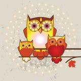 Illustration de famille de hiboux Photos libres de droits