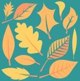 Illustration de feuilles d'automne Image libre de droits