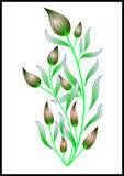 Illustration de fleur Photos libres de droits