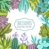 Illustration de fond de Succulents Photographie stock