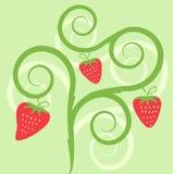 Illustration de fraise Photographie stock