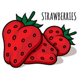 Illustration de fraises Photo stock