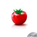 Illustration de fruit frais et de légumes Photographie stock libre de droits