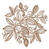 Illustration de graines de cacao Graines de cacao de chocolat Illustra de vecteur illustration stock