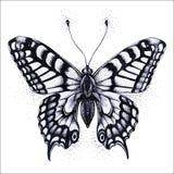 Illustration de guindineau Papillon de tatouage de vecteur Symbole d'âme, d'immortalité, de renaissance et de résurrection illustration libre de droits