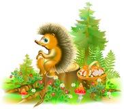Illustration de hérisson se reposant sur le tronçon dans une forêt Photo libre de droits