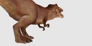 Illustration de haute résolution extrêmement détaillée 3d et réaliste d'un dinosaure de T-Rex d'isolement sur le fond blanc illustration libre de droits