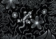 illustration de main-dessin Lézard dans l'herbe et les fleurs Photos libres de droits
