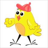 Illustration de marche de poulet. caractère d'isolement Photos stock