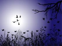Illustration de nature Images stock