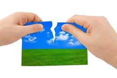 Illustration de nature de larme de mains Image stock