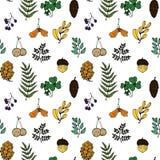 Illustration de nature Matériaux normaux Carte postale de forêt Fruits de forêt, feuilles, branches Configuration sans joint illustration libre de droits