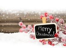 Illustration de Noël Branch Photos stock