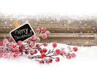 Illustration de Noël Branch Photos libres de droits