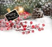 Illustration de Noël Branch Photo libre de droits