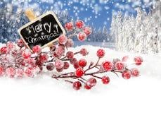 Illustration de Noël Branch Photographie stock