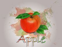 Illustration de nourriture de vecteur d'aquarelle d'Apple Images stock