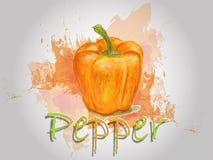 Illustration de nourriture de vecteur d'aquarelle de poivre Photos libres de droits
