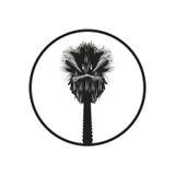 Illustration de palmier Images libres de droits