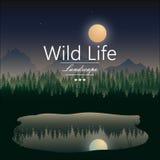 Illustration de paysage de forêt de nuit Photographie stock
