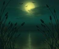 Illustration de paysage de rivière de pleine lune Photographie stock libre de droits