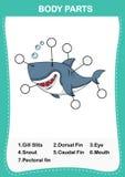 Illustration de pièce de vocabulaire de requin de corps illustration stock