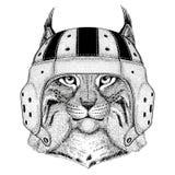 Illustration de port animale sauvage de sport de casque de rugby de Lynx Bobcat Trot Wild de chat Image libre de droits