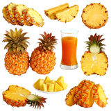 Illustration de ramassage d'ananas Photographie stock libre de droits