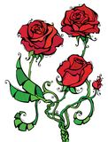Illustration de roses rouges Photo libre de droits
