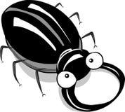 Illustration de scarabée de mâle Image libre de droits