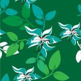 Illustration de Seamples de vecteur de fleur Image stock