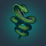Illustration de serpent illustration stock