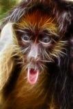 Illustration de singe d'araignée Image libre de droits