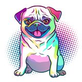 Illustration de style d'art de bruit de chien de roquet dans des couleurs au néon lumineuses d'arc-en-ciel Image stock