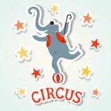 Illustration de style d'autocollant de représentation de cirque avec l'éléphant illustration de vecteur