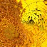 Illustration de sym?trie de spirale de conception g?om?trique geometry illustration libre de droits
