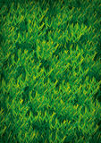 Illustration de texture d'herbe Images stock