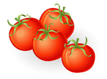 Illustration de tomates Images stock