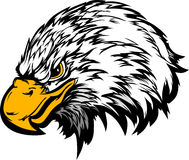 Illustration de tête de mascotte d'aigle Photo libre de droits