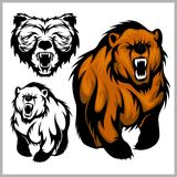 Illustration de vecteur de couleur d'ours gris d'ours Images stock