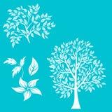 Illustration de vecteur d'arbre sur le fond blanc - Photo libre de droits